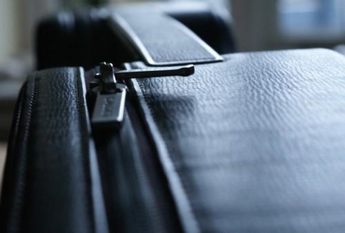 Calder violin case low light 1