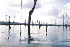 Brokopondo (Suriname)