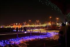 2007台灣燈會在嘉義054