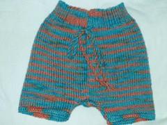 blutan shorties (mcm_2013) Tags: wool knitting nappy crochet knit yarn cover knitted cloth shorties soaker inakid