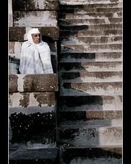 steps (vikkram_paaniia) Tags: copyrights vikkram paaniia