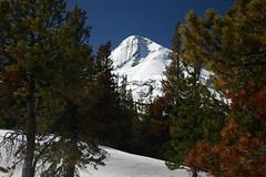 Mt. Hood from Cloud Cap Road (mick mcd) Tags: snow ski oregon mthood supershot