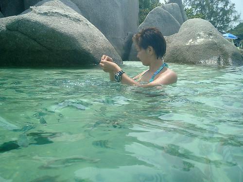 koh nangyuan-under the sea 17th mar.07
