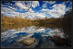 Reflect upon this. (Tom Kaszuba) Tags: tree clouds reflections landscape connecticut gnd supershot conncollege tomkaszuba