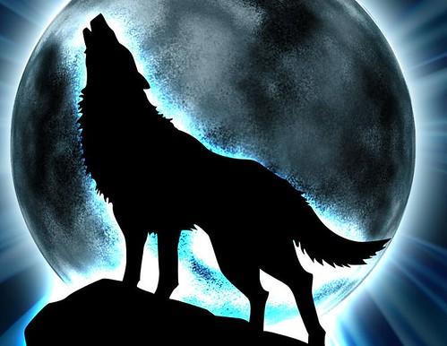 wolfs by ajm_2021.