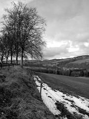 Hill of Drimmie, Perthshire (March 2006) (James Mundie) Tags: blackandwhite bw black blancoynegro monochrome fence scotland highlands noir perthshire monochromatic treeline biancoenero a93 blancetnoir mundie schwarzweis copyrightprotected jamesmundie ysplix hillofdrimmie jamesgmundie profjasmundie jimmundie copyright©jamesgmundieallrightsreserved