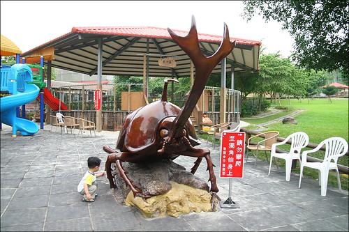 獨角仙農場25