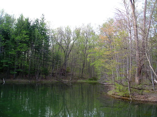 Cherry Lake I