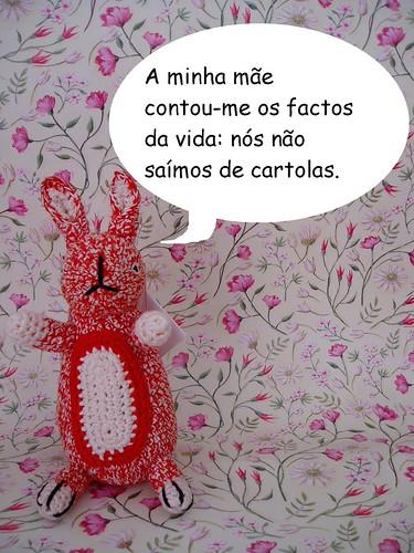Coelho sobre a mãe