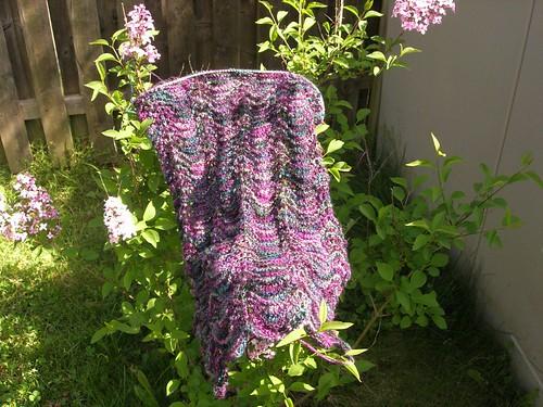 Lilac shawl on lilac bush