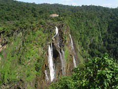 The view of Jog Falls from the other side_ Raja in the foreground