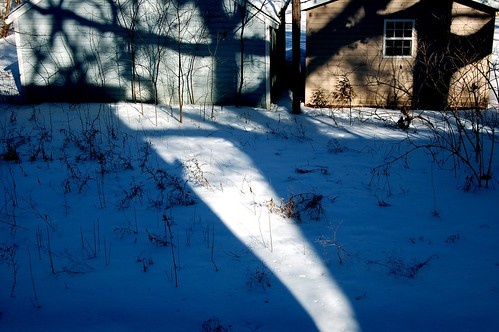 Snow on a sunny day