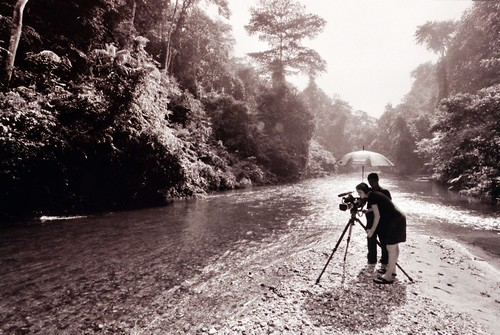 Working in Sumatra's Rainforests