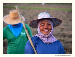 Beauty at Work (Araleya) Tags: travel woman smile thailand lumix fz20 asia southeastasia dusk farm joy hijab happiness panasonic lovely agriculture fieldwork korat thais womanatwork farmimg phimai araleya nahkohnratchasima tungsumrit