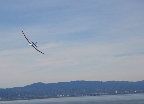 Radio-controlled glider in flight.