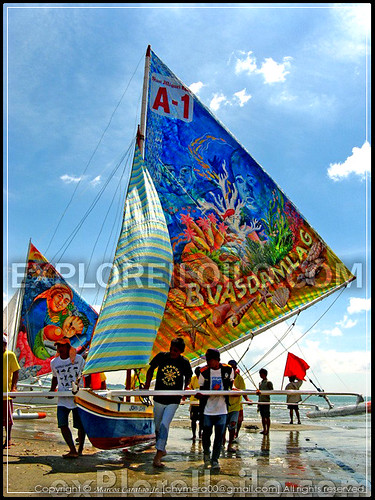 paraw regatta festival schedule