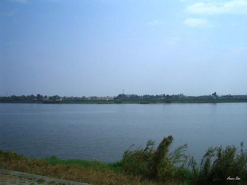 中洲堤防 016-1