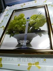http://www.flickr.com/photos/laclef_yoshiyasu/412498314/