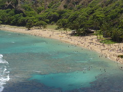 DSC00728 (jeremytheys) Tags: hawaii honeymoon waikikibeach honalulu