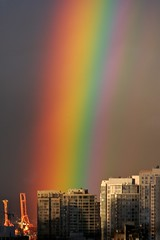 Rainbow by Flickr user Proggie