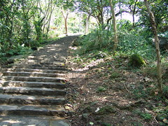 Steps up the Tienmu Trail