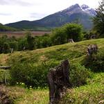 Tierra de Fuego Argentina 107