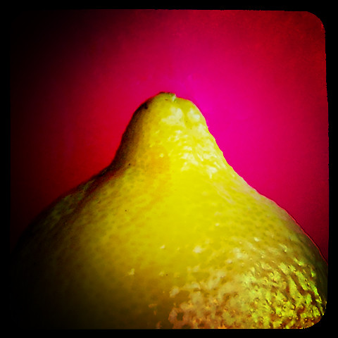 lemon macro against pink background