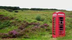Cridam quan arribes a Escòcia (laguitarreta) Tags: escocia telefono laguitarreta