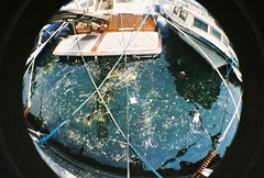 bebek deniz pislii (mert_yuksel) Tags: park flowers sea trash lomo lomography istanbul fisheye deniz boaz bebek p