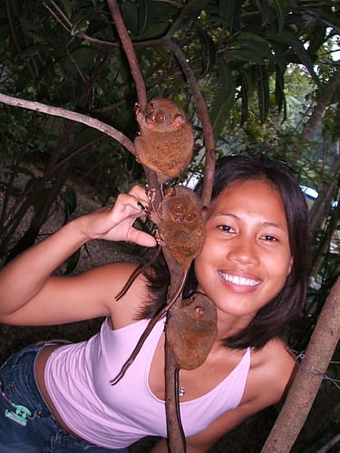 459270621_edd3f2b13a - Three Lucky Tarsiers.. - Philippine Photo Gallery