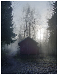 ... here one morning ([ Petri ]) Tags: morning mist fog forest espoo finland athmosphere liiteri bestsun laitmanintie