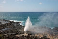 Kauai D3 (1)