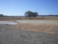 Dam is drying up