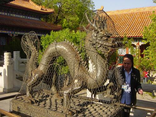 dragón encarcelado
