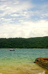 Andamans Havelock Island (Ashit Desai) Tags: sea india beautiful island asia most barefoot beaches havelock wildorchid andamans andamanislands beautifulbeaches andamannicobar portblair radhanagarbeach havelockisland ashitdesai