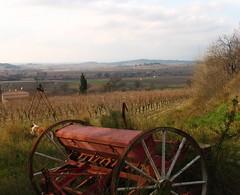 Domaine de Clairac (epeigne37) Tags: france vines wine midi languedoc bziers