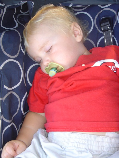 Sleeping-Reds-Fan