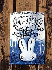 SHY (Kronik_Sk_Usa) Tags: art graffiti shy walls bombing traincars