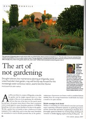 Wigandia p36 The Garden Jan 2005