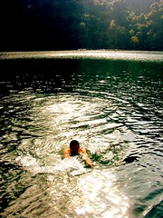 Honey over the Maiden Lake... the white Croc (dinesh_75000) Tags: lake holiday history swimming pregnant honey noon langkawi maiden waterpolo madhu darkgreen whitecrocodile