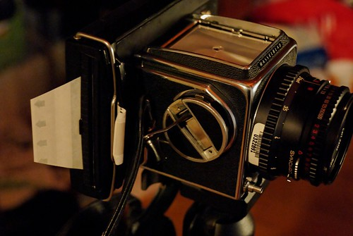 100+ Hasselblad 500cm Polaroid – yasminroohi