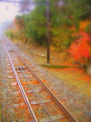 rail (totomai) Tags: autumn beautiful japan fog vanishingpoint rail railway hakone bigmomma challengeyouwinner superaplus aplusphoto
