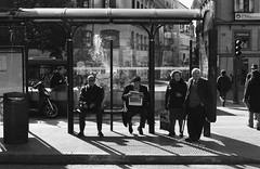 Leica33_20p.jpg