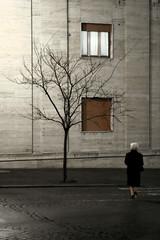 Allegory - by Pensiero