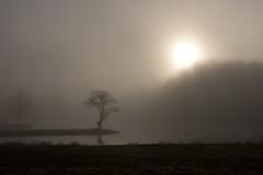 Foggy Sunrise (K. W. Sanders) Tags: trees sun lake reflection water silhouette fog sunrise geotagged canon20d alabama 1on1 canon1740mmf4l blueribbonwinner flickrexplore 123nature 1on1nature abigfave flickrgold 123unlimited diamondclassphotographer flickrdiamond