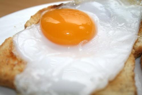 Duck Eggs 3