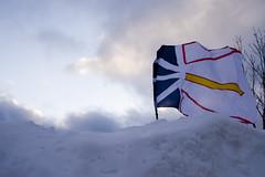 Newfoundland Flag : Project365 : Photo 39 (grahamcase) Tags: snow oneaday newfoundland cloudy flag photoaday pictureaday project365 project36539 project365030707