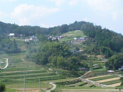 paysage japonais campagne