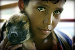 Intimate bonds... (carf) Tags: poverty friends boy brazil dog streets boys brasil kids youth puppy children hope kid community puppies education support child risk friendship culture forsakenpeople esperana social impoverished underprivileged altruism relationship educational bonds streetkids streetchildren development prevention cultural atrisk mundouno cleison
