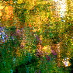 Giverny spirit IV! me de Giverny IV! (Denis Collette...!!!) Tags: flowers canada reflection tree fleurs river garden painting bravo invisible jardin rivire peinture reflet qubec monet soul impressionism arbre giverny impressionistic me blueribbonwinner firstquality 1000v40f abigfave artlibre impressedbeauty deniscollette asclpiades asoulisasoulisasoulisasoul world100f